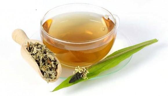 plantain tea