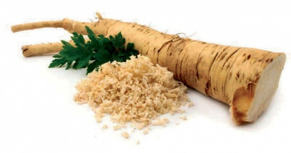 horseradish-natural remedies pocket guide
