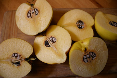 natrural remedies pocket guide - pound quince seeds