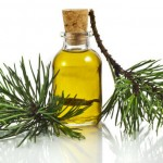 Silver Fir Oil – Natural Wonder Cure